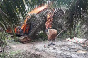 Area sumur minyak ilegal di batanghari. Foto: Rizki/Serujambi.com