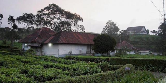 Rumah PTPN VI Kayu Aro Kabupaten Kerinci