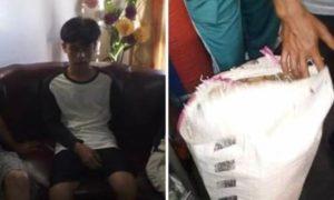 Diduga Curi Kulit Manis, Pemuda Koto Kapeh Siulak Ditangkap