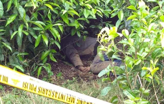 Mayat Laki-Laki Yang ditemukan di Kebun Teh Kayu Aro Belum diketahui Identitas