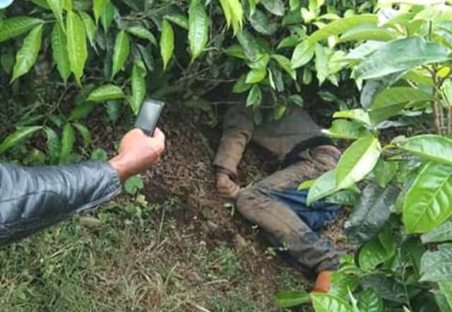 Warga Temukan Mayat di Kebun Teh Kayu Aro Kerinci