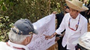 Presiden Joko Widodo saat mengunjungi kawasan di Kabupaten Gunung Mas, Kalimantan Tengah pada Rabu (8/5/2019). (Rusman, Biro Pers-Setpres)