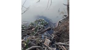 PT ABP yang mengalir ke Sungai Batanghari. Foto: Rizki/Jambiseru.com