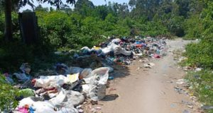 Sampah Menumpuk di Jalan Desa Pancuran Tiga