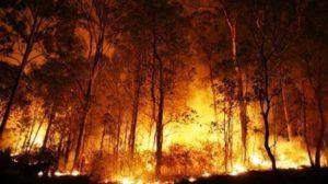 Ilustrasi titik panas. [Shutterstock]