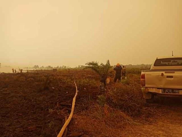 Photo of 9 Perusahaan yang Ditetapkan Polisi Sebagai Tersangka Kebakaran Hutan