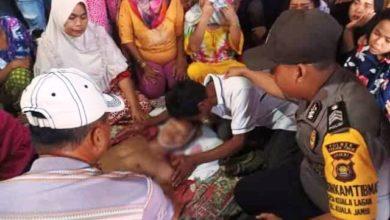 Photo of Nasib Naas Rajja Tanjabtim Tewas Tersengat Listrik saat Ambil Kelapa
