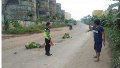 Photo of Pelajar di Muaro Jambi Tewas Dilindas Truk, Setelah Antar Ayah Kerja