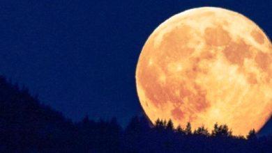 Photo of Fenomena Super Pink Moon yang Akan Muncul Selasa Besok